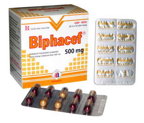 Biphacef 500 mg